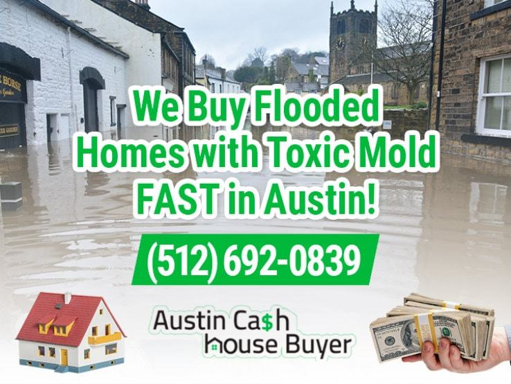 austin water damage and mold